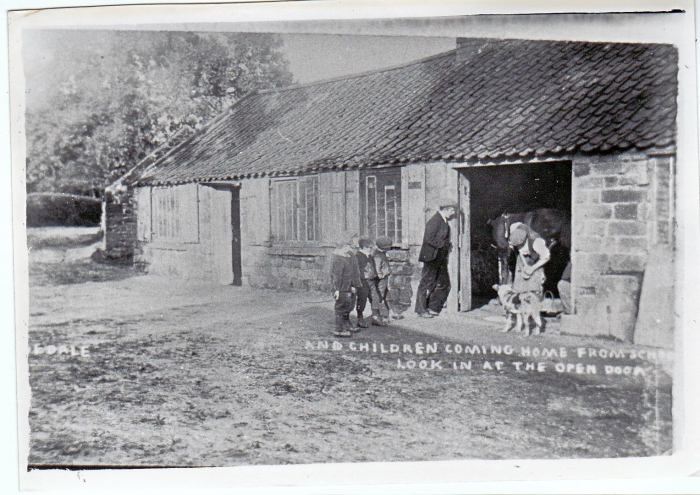 Shoeing at smithy on Milk Street R.A.